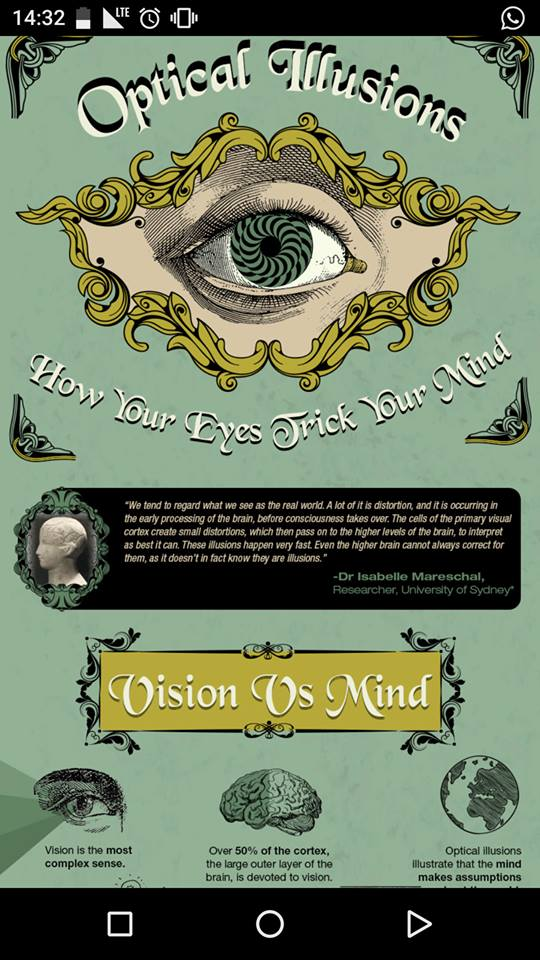 opticall illusions infographic